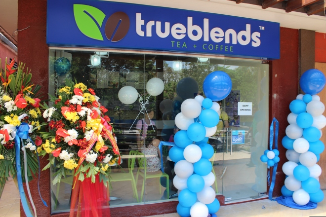 true blends opening