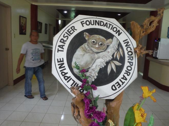 Tarsier Tour in Bohol